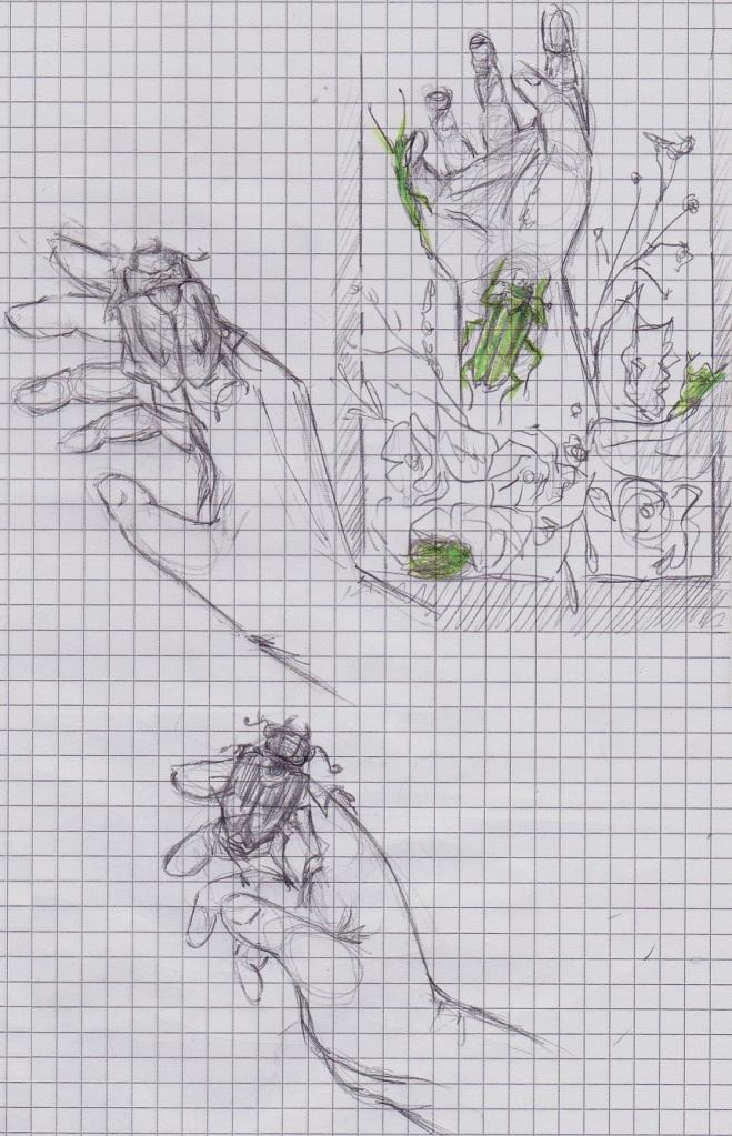 Hand mit Käfern - Ideenfindung