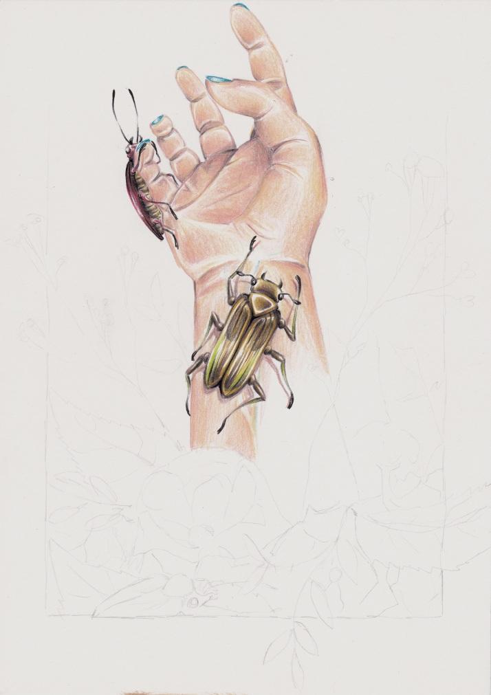 Hand mit Käfern - Zwischenschritt