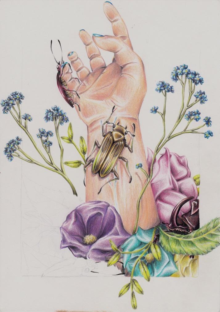 Hand mit Käfern - Zwischenschritt 2