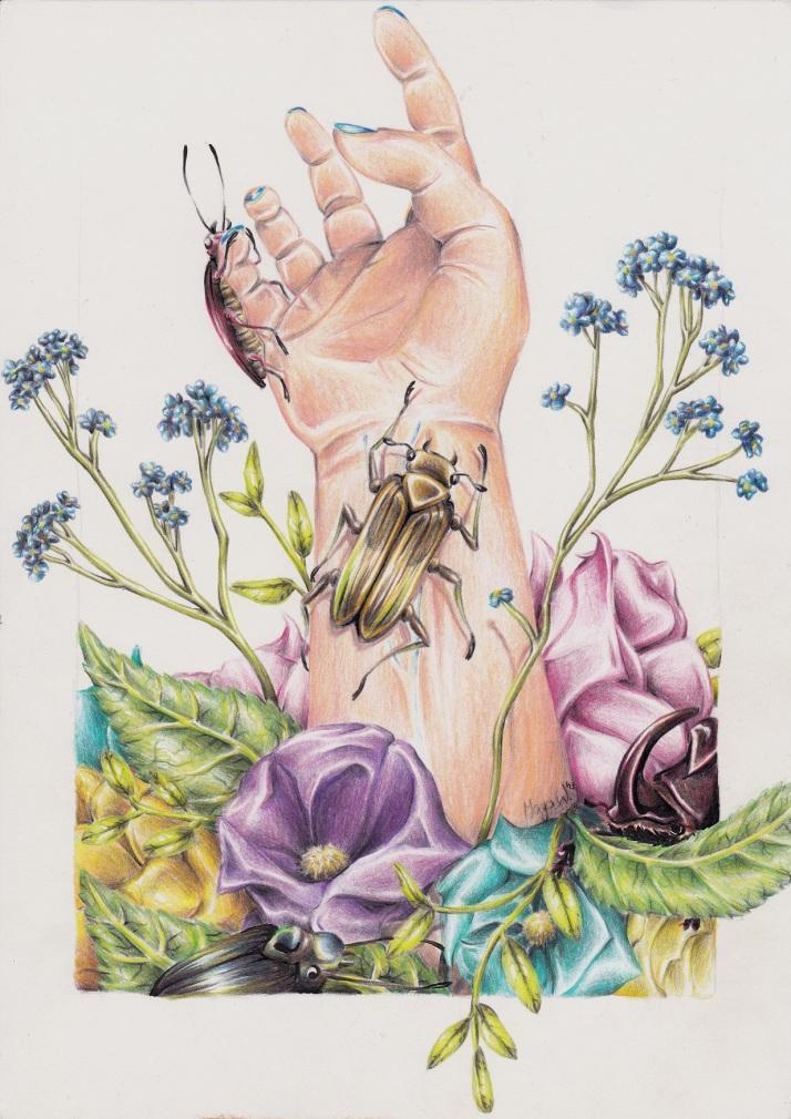 Hand mit Käfern - Zwischenschritt 3