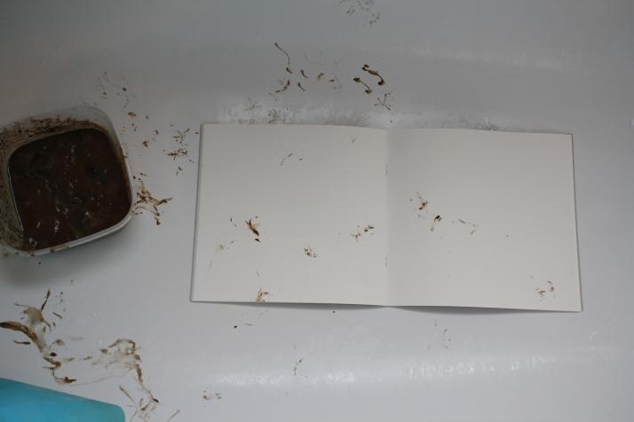Frosch - Buch
