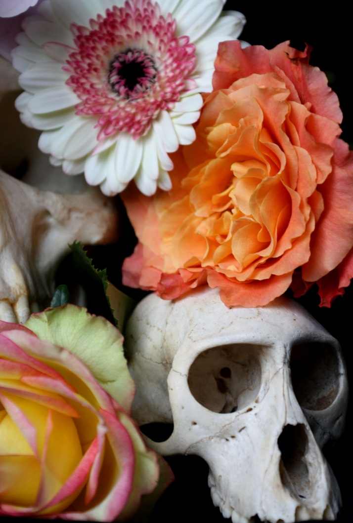 Schädel & Blumen