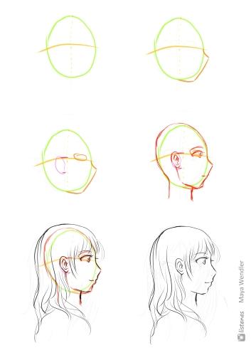 1 Entwicklung -Frauenkopf seitlich
