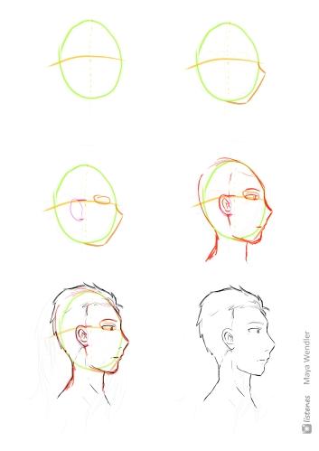 2 Entwicklung - Männerkopf seitlich