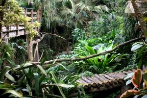 Orchideenhaus Lemmer 14
