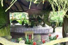 Orchideenhaus Lemmer 15