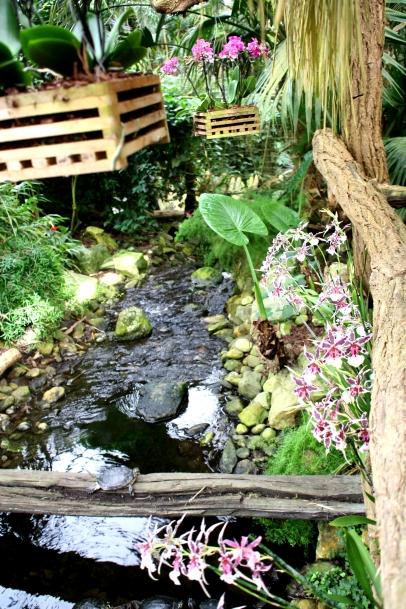 Orchideenhaus Lemmer 18