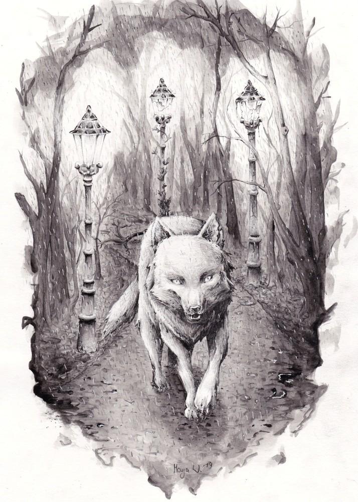 Vanessa Wolf